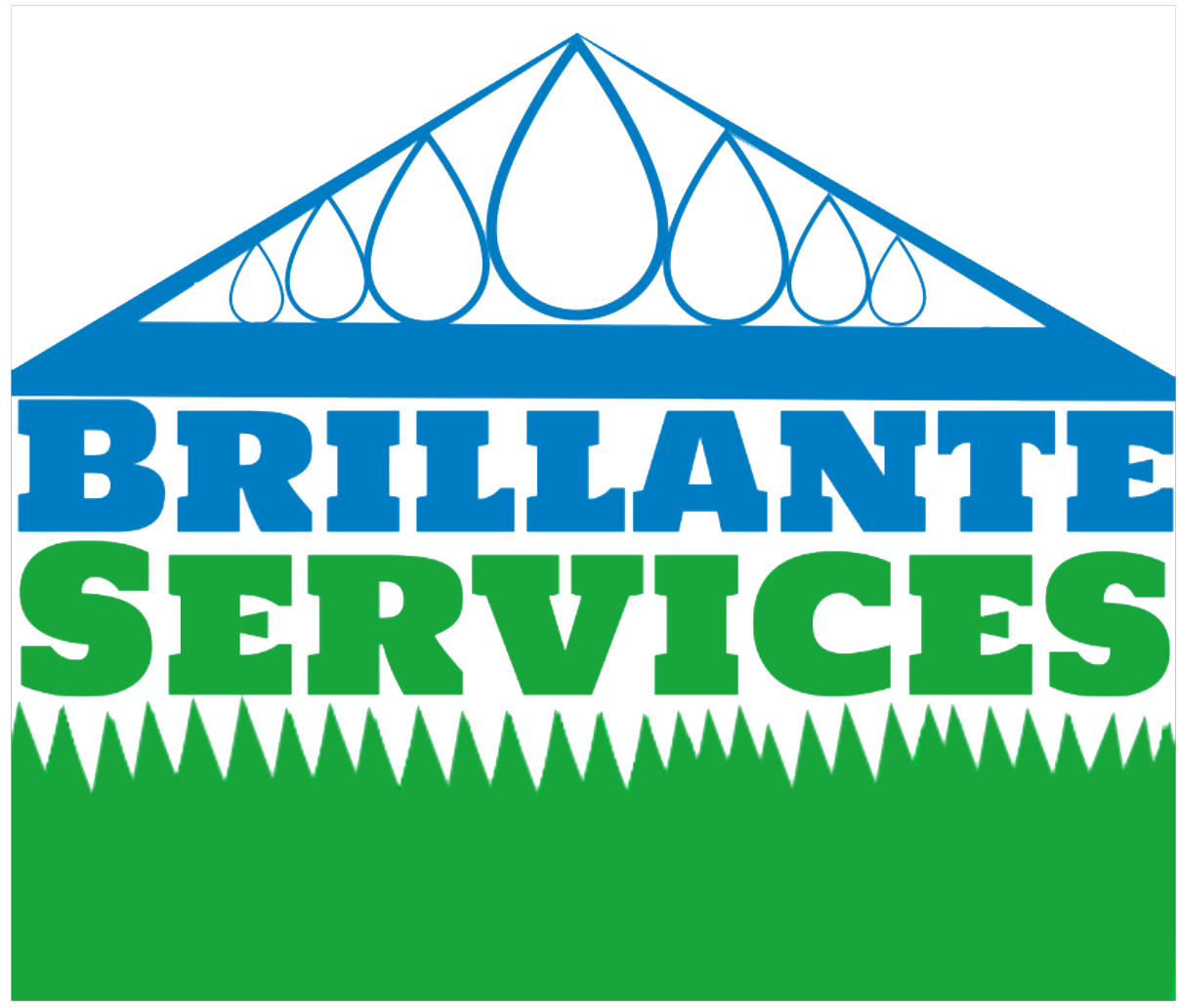 Logo_brillante_services